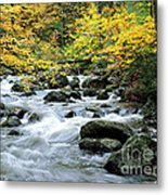 Autumn Stream 3 Metal Print