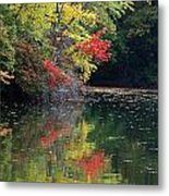 Autumn Tree Reflections Metal Print
