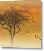 Back To The Nest Metal Print by Tom York Images