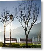 Bench And Trees Metal Print