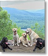 Best Of Friends Metal Print