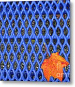 Blue Bench And Autumn Leaves Metal Print