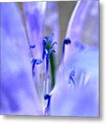 Blue Weed Metal Print