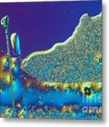 Buckyball Crystal Metal Print