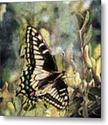 Butterfly On Yellow Flowers Metal Print
