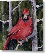 Cardinal Metal Print