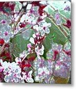 Color 59 Metal Print