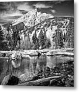 Cottonwood Creek Metal Print