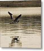 Crossing The Lake Metal Print