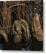 Cypress Knee Monster Metal Print