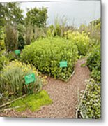 Dilston Physic Garden, Northumberland, Uk Metal Print