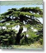 Do-00512 Cedar Forest Metal Print