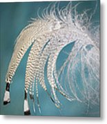 Droopy Feather Metal Print