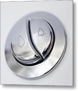 Dual Flush Button Metal Print