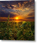 Early Bird Special Metal Print