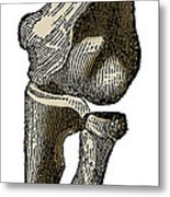 Elbow Joint Metal Print