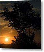 Evening Sunset  Metal Print