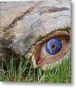 Eye Of A Dinosaur Lightning Metal Print