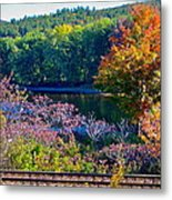 Fall By The River 4 Metal Print