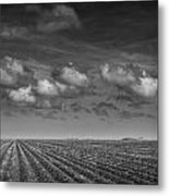 Field Furrows And Clouds In South East Texas Metal Print