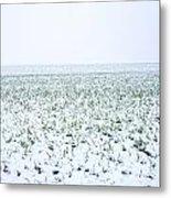 Field In Winter Metal Print