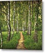 Find Your Way Back Home Metal Print