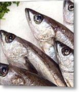 Fishes Metal Print by Jane Rix