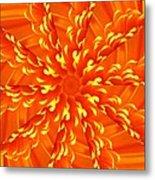 Floral Sunrise Metal Print