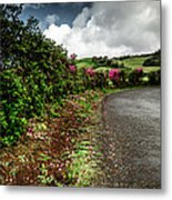 Flores Island - Azores Metal Print