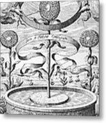 Flower Clock, 1643 Metal Print