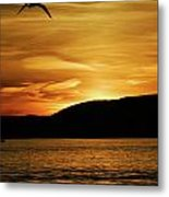 Flying Home Metal Print