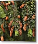 Forest Treasures Metal Print by Bonnie Bruno