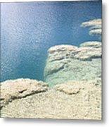 Freshwater Reef Metal Print