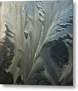 Frost Crystal Patterns On Glass, Ross Metal Print