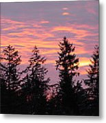 Frosted Morning Silhouette Metal Print