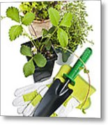 Gardening Tools And Plants Metal Print