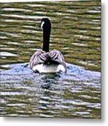 Go With Confidence Metal Print by Rotaunja
