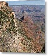 Grand Canyon National Park Arizona Usa Metal Print