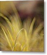 Grass Abstract 2 Metal Print