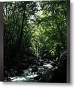 Great Smoky Mountains Np 007 Metal Print