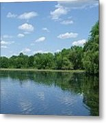 Harris Pond Metal Print