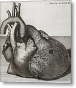 Heart Of King George II, 18th Century Metal Print