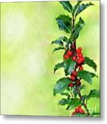 Holly Branch  Metal Print