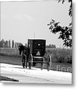 Horse And Buggy On The Road Metal Print