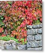Hot Autumn Leaves 02 Metal Print