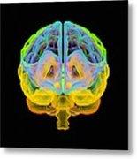 Human Brain, Artwork Metal Print