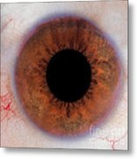 Human Eye Metal Print