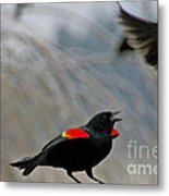 I Was Here First Metal Print