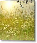In God's Country Metal Print