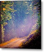 Into The Light Metal Print by Donna Duckworth